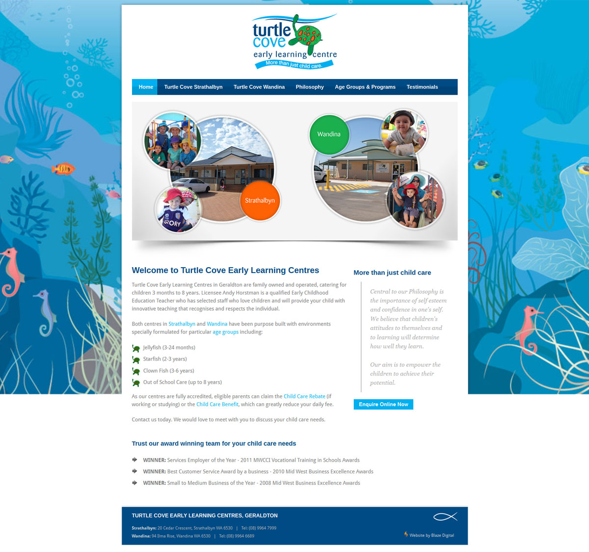 Turtle Cove Home Page Design